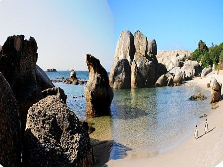 Self Catering Apartments, Simonstown, Cape Town  Boulders Beach View - a skip and a hop away   http://www.capepointroute.co.za/moreinfoSpecials.php?aID=40