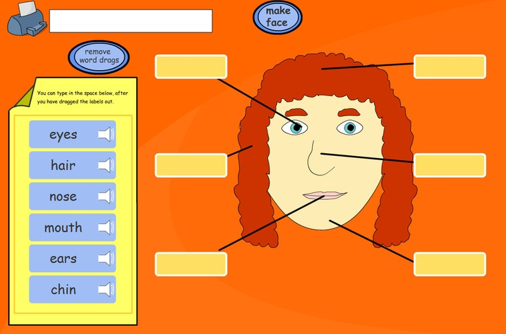 Click the buttons on the face to choose hair style, eyes and lips for the face. Pupils make an impression of themselves or design a face. Use the bar to select a skin tone. Pupils can be asked to drag labels or type their own depending on ability and lesson objectives.