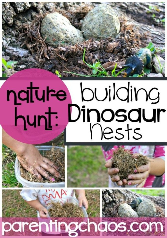 Dinosaur Nests! Exploring Science and Nature from Parenting Chaos