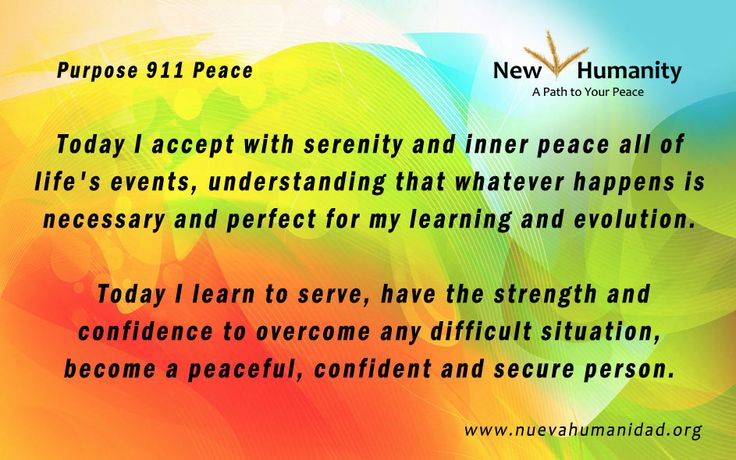 Purpose 911 Peace