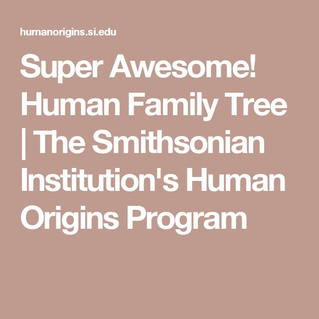 Super Awesome! Human Family Tree | The Smithsonian Institution's Human Origins Program
