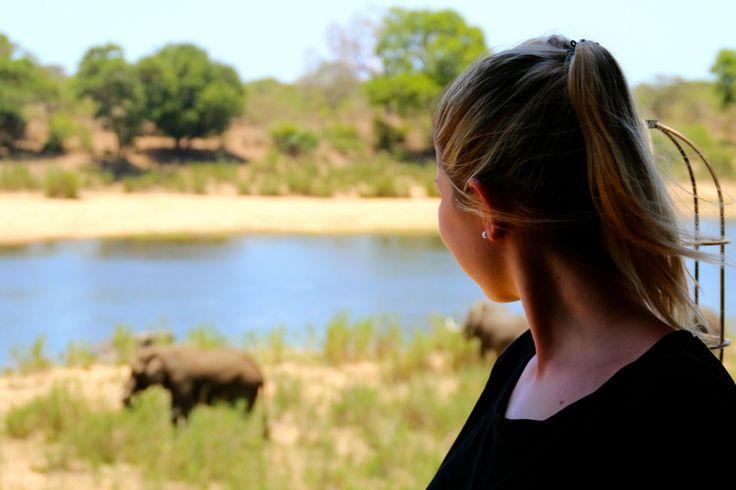 SÜDAFRIKA AUF EIGENE FAUST: ROUTE, HIGHLIGHTS UND GANZ VIELE TIPPS