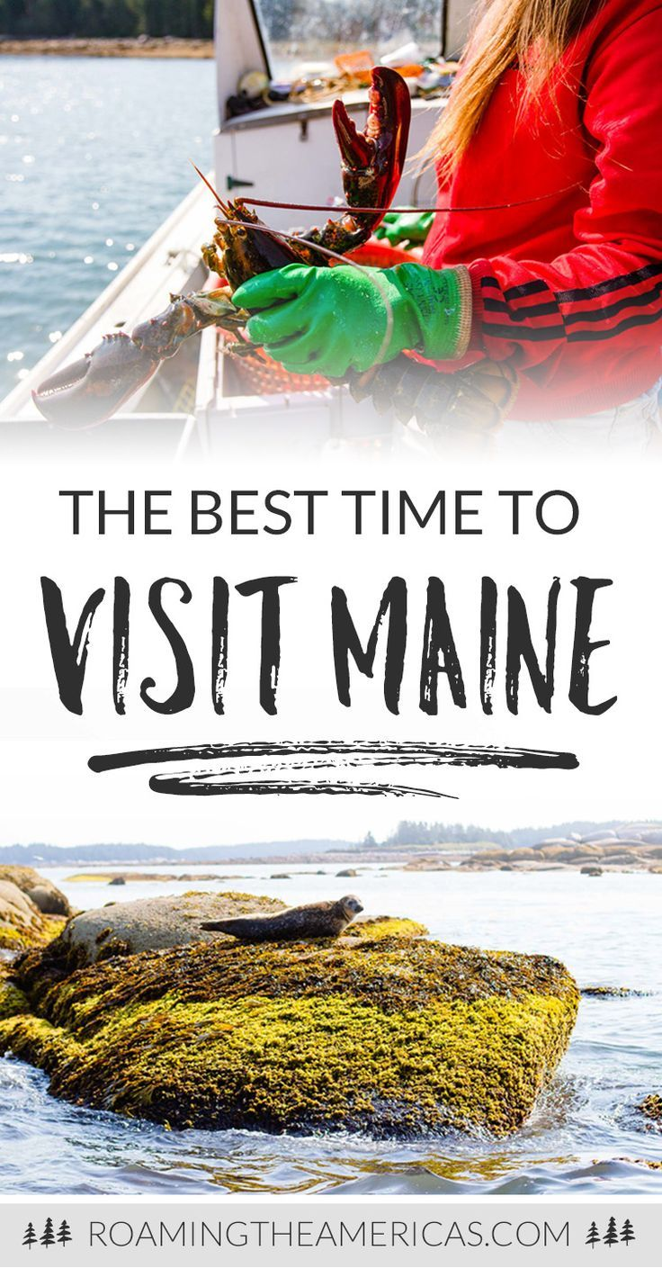 Wondering When The Best Time Of Year Is To Plan Your Vacay In Vacationland Check Out This Depth Maine Travel Guide With Tips From A Local