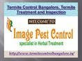 Termite Control Bangalore, Termite Treatment and Inspection - Imagepes by imagepestcontrol via authorSTREAM
