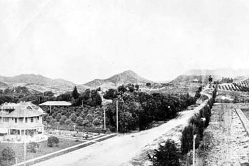 It's hard to believe that this idyllic country scene would later evolve into one of the most famous corners in the world: Hollywood and Vine. This photo was taken in 1907 when much of the land around Vine St was taken up with watermelon fields. In this view, we're looking north up Vine St from what was then known as Prospect Ave but in the early 1910s was renamed Hollywood Boulevard. Oh boy – if the people living in that house on the left could see what their neighborhood looks like now!