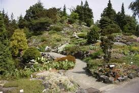 Afbeeldingsresultaat voor botanische tuin utrecht