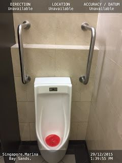 Bathroom Grab Bars India 327 best alastar home care images on pinterest | handicap bathroom