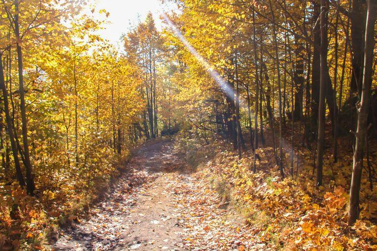 Yellow ray by Trukhanova Tanya on 500px