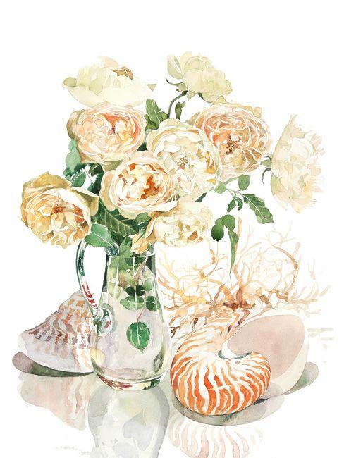 ベージュのバラと貝