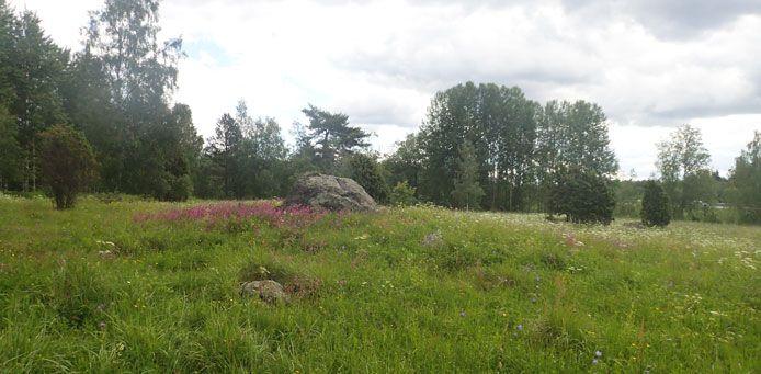 Päivääniemen kalmisto - Luontoon.fi