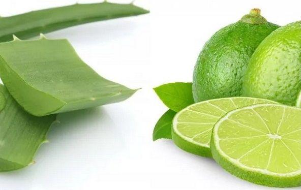 Babosa e limão têm propriedades que ajudam o corpo a eliminar toxinas.