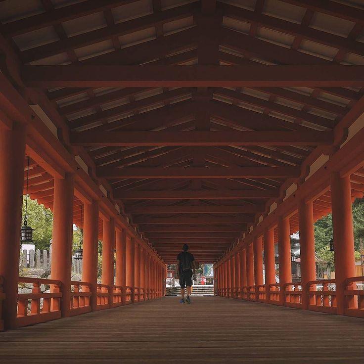 Il #viaggio può anche finire ma la strada percorsa rimane #Giappone #Japan #travel  #amazing #YouTube #vlog #travelblogger #travelvlogger #photooftheday #photography #japantrip #turismo #sugoi #onlyinjapan #kawaii #shrine #temple #torii #toriigates #lifeisbeautiful #life #natgeotravel