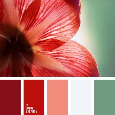 blanco y rojo, burdeos, burdeos y rojo, color blanco plateado, color blanco sucio, color esmeralda pálido, color rojo vino, color verde lechoso, coral y rojo, rojo coral, tonos rojos, verde y rojo.
