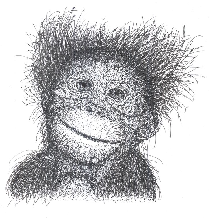 Crazy monkey. Ink drawing by AliveDot