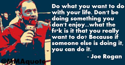 Joe Rogan on doing what you want to do with your life.