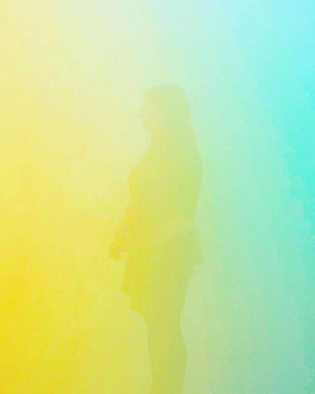 jump into the fog