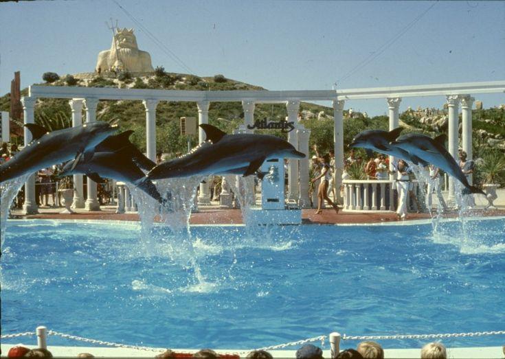 143912PD: Atlantis Marine Park, Two Rocks, 1988-1989