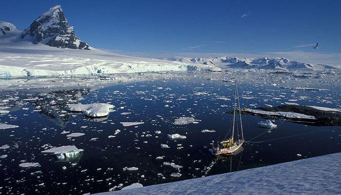 Beagle Channel. Puerto Williams. Chile. XII Región de Magallanes y de la Antártica Chilena. http://www.pelagic.co.uk/prog_ant2012.asp