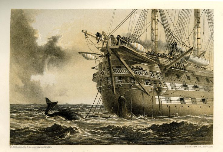 HMS 'Agamemnon' laying the Atlantic Telegraph cable in 1858. A whale crosses the line! Illustration by Robert Dudley. IET Archives ref. NAEST 045/120.