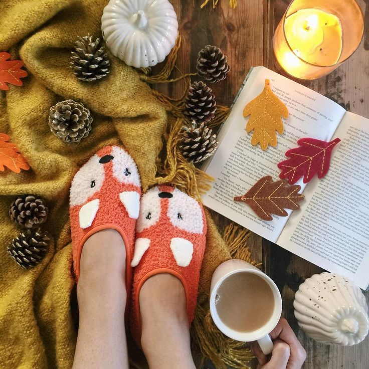 cozy fox slippers, coffee/tea, a book, autumn leaves, and a candle = perfect evening
