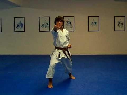 Taikyoku Nidan Shotokan Karate Kata