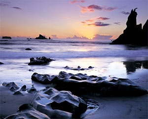 Olympic National Park, WABuckets Lists, States Parks, Olympics Rain, Olympic National Parks, Olympics National Parks, Rain Forests What