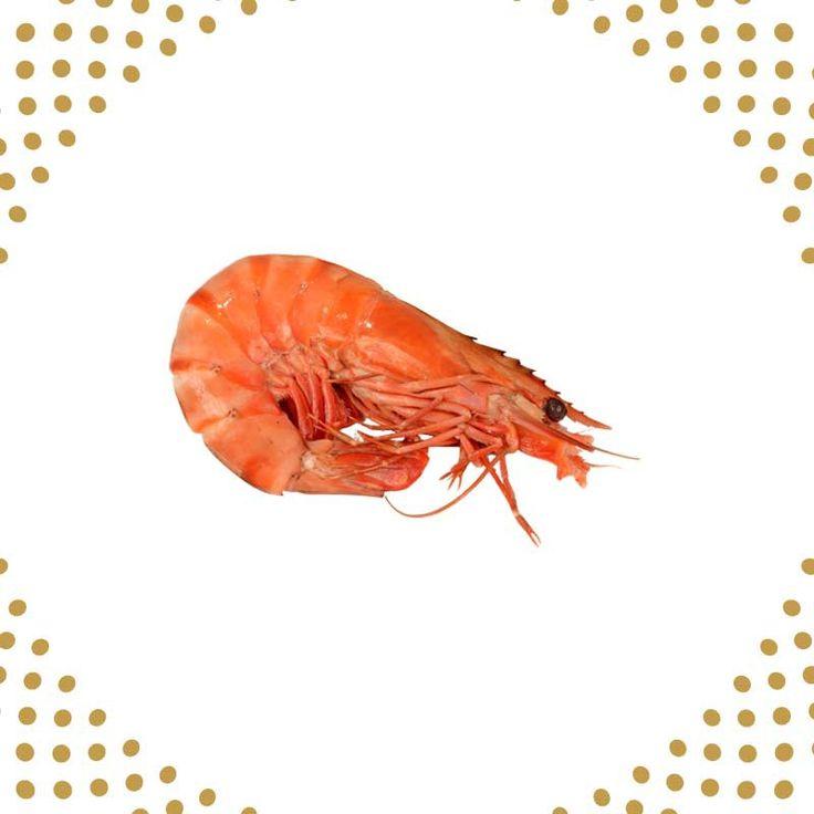 Magnifiques crevettes cuites à l'eau de mer chez Pierrot Coquillages! Les crevettes perles de corail sont reconnues par leur chair ferme et leur goût iodée. Accompagnez votre dégustation de crevettes d'aïoli ou de rouille. Composez votre plateau de fruits de mer sur notre site et choisissez les accompagnements de votre choix!  PIERROT COQUILLAGES 04 71 71 97 65 www.coquillagespierrot.com