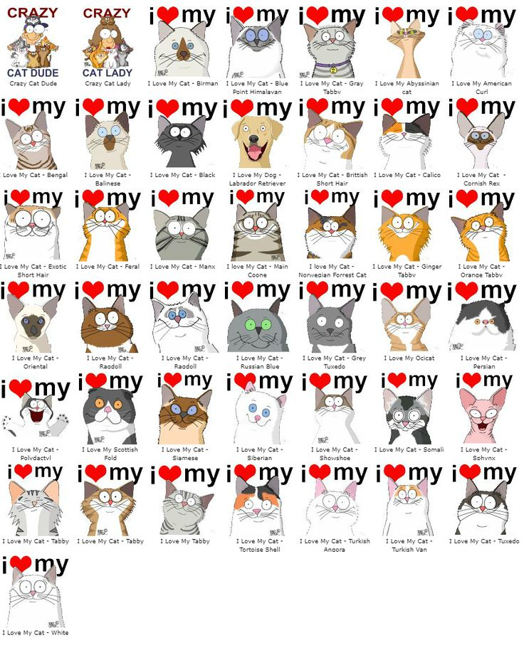 I Love My Cat #adopt #cat #dog #t-shirt #merchandise