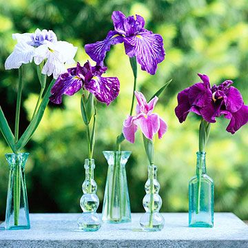 If you only have a handful of flowers, don't waste your time arranging them together.  -- Separate them and place one stem in a bud vase (dollar stores are a good source for these) for the highest impact.  -- Group them together on a shelf or table.