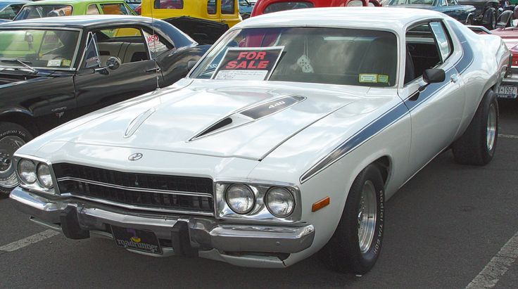 1974 Plymouth Roadrunner - I love this hood !!!