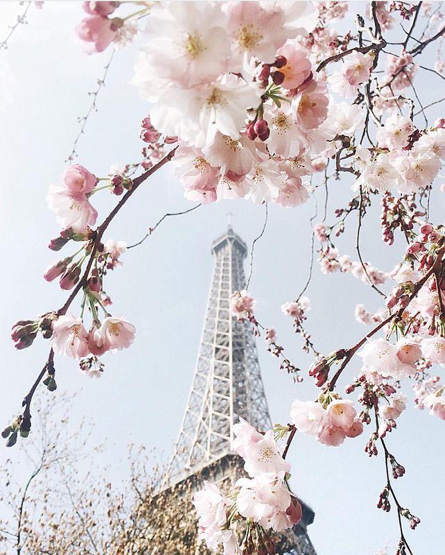 Spring | Paris