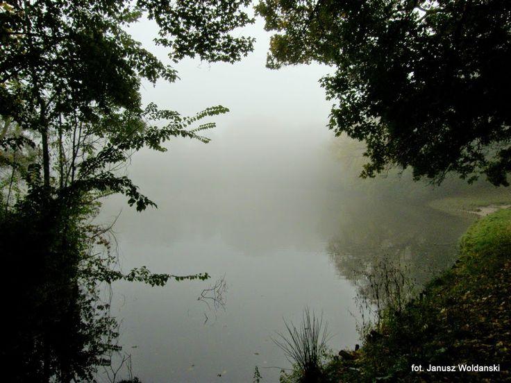 2009_10_19 Skaryszewski we mgle - Janusz Woldanski - Picasa Web Albums