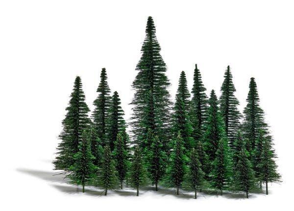 Terkeren 30 Gambar Pohon Pisang Kartun Hitam Putih Di 2020