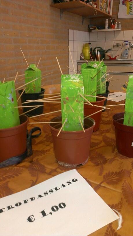 Cactus leuk in het groot als decoratie op het plein.