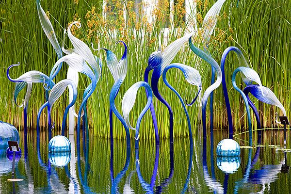 dale chihuly of blue heron in nashville | ... Garden Tropical Pools REICHENBACH MIRRORED BALLS AND BLUE HERONS
