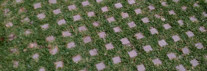 Turf Block Driveable Grass Picture