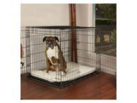 5 Best XXL Dog Crate Options: Which One is Right for Your Giant Dog?
