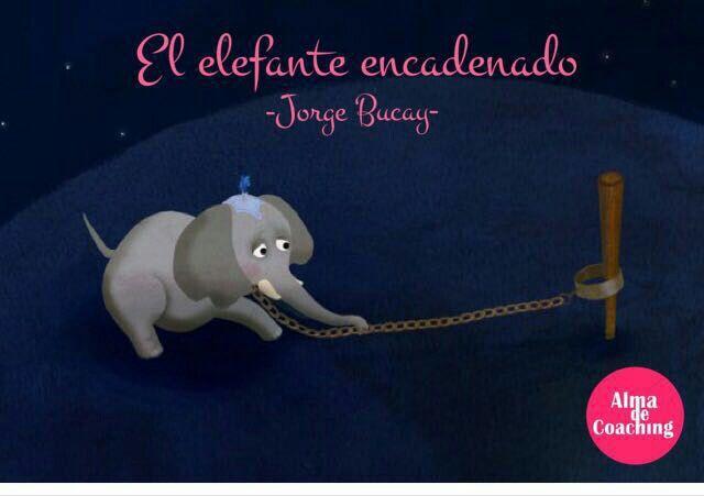 """Tu única manera de saber, es intentar de nuevo poniendo en el intento todo tu corazón.....TODO TU CORAZON"""". El Elefante Encadenado por Jorge Bucay  Http://almadecoaching.com #coaching #motivación #reflexión #jorgebucay #enseñanza #rompercadenas"""
