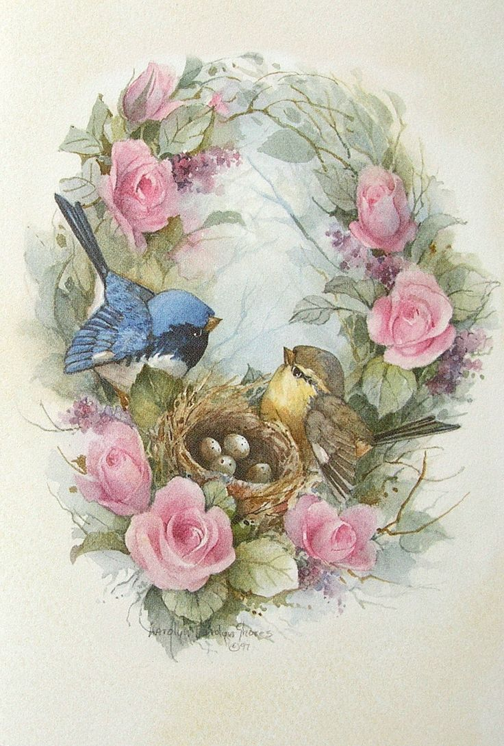 Carolyn Shores Wright Birds Eggs Nest Pink Rose Flowers Blank Note Greeting Card | eBay
