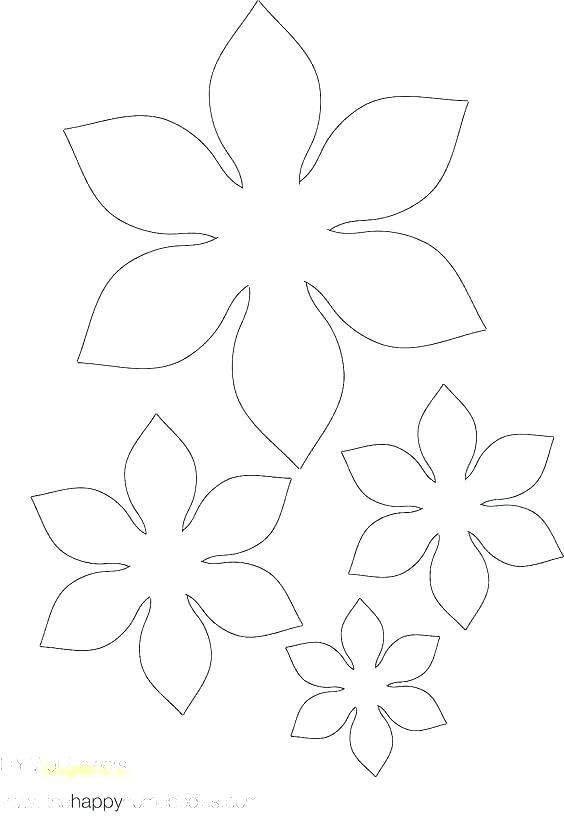 Paper Flower Template Petal Templates Beautiful Peony Free