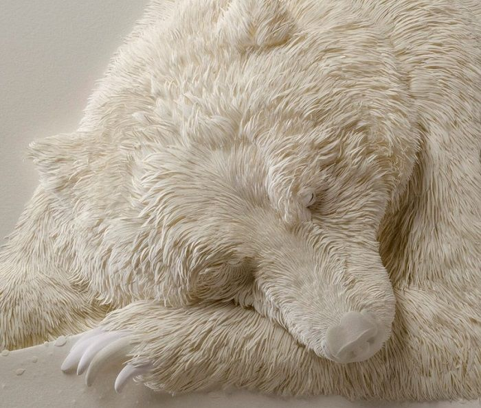 Da vicino questo sembra un orso polare dormire, ma guardare di nuovo ... Incredibile