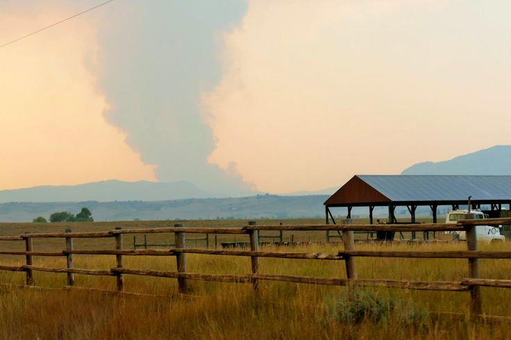 Wildfire forces pre-evacuations near Steamboat Springs | FOX31 Denver