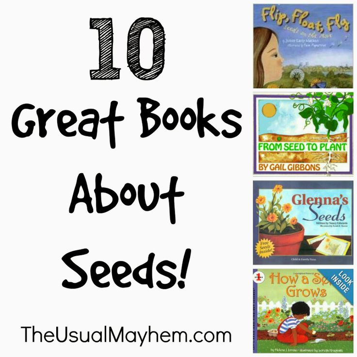 410 Best Pumpkin Patch Daycare 2015 Images On Pinterest Preschool Colors Colors And
