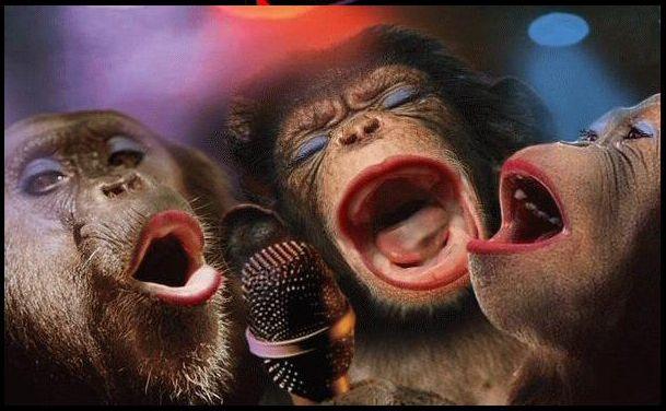 Resultado de imagen para chimpances maquilladas