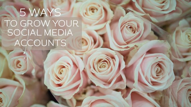 5 Ways to Grow your Social Media Accounts | floweronaTV