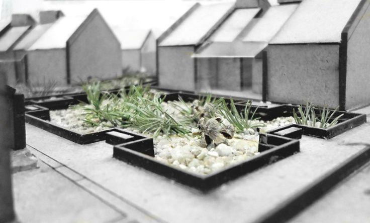 Projekt zagospodarowania terenu - zdjęcie makiety