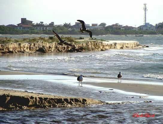 Near Forte beach - Florianopolis - Brazil
