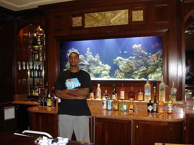 Bar aquarium by seaview aquariums aquariums for Fish tank bar