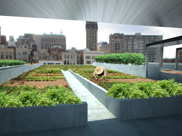 Detroit Center for Urban Agriculture and Seed Bank - Presenting the roof-top farm to downtown Detroit by Sean Baxter