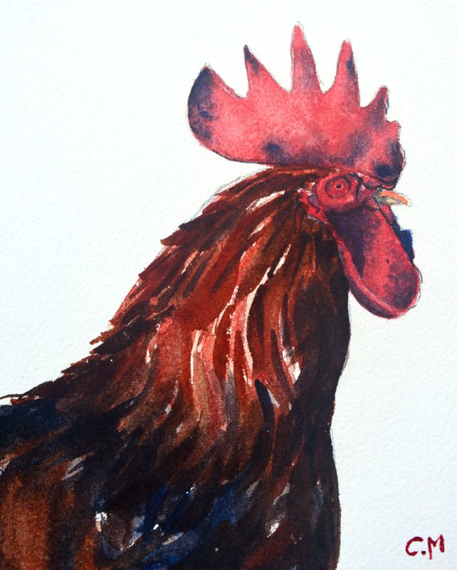 Painting of Rooster in Watercolour